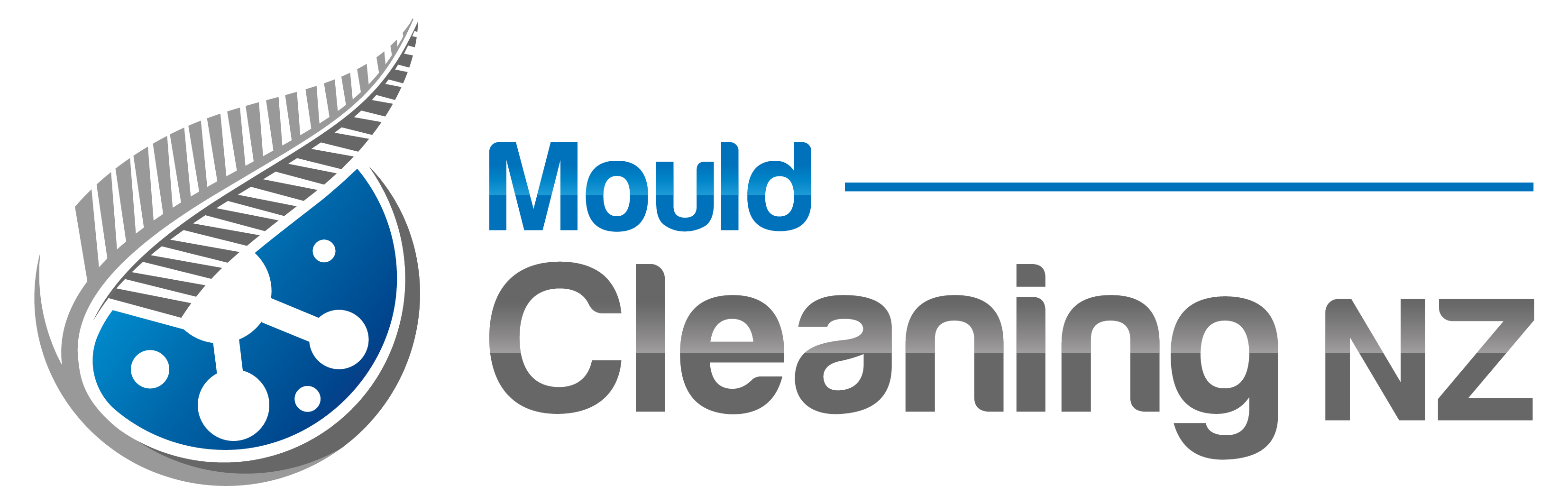 mould removal company NZ